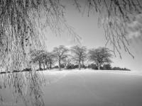 foto3-fredrik-sand-skogskyrkogården-9